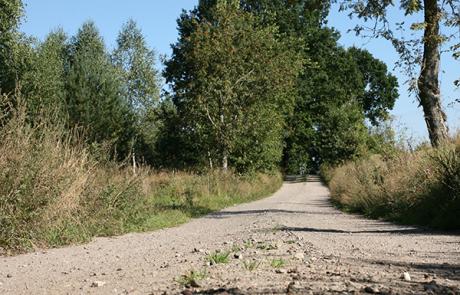 Szlaki piesze Nordic Walking